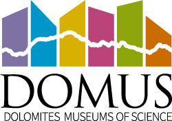 DOMUS-logo-250